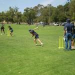 Cricket 3